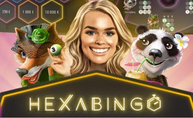 HexaBingo logo